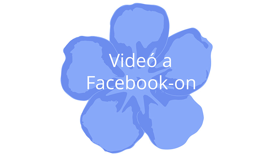 Demenciabarát Környezet Magyarország logo link facebook video