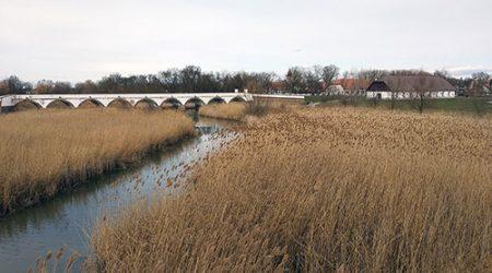 Nederlandse architect Landschappelijk Wonen in Hongarije